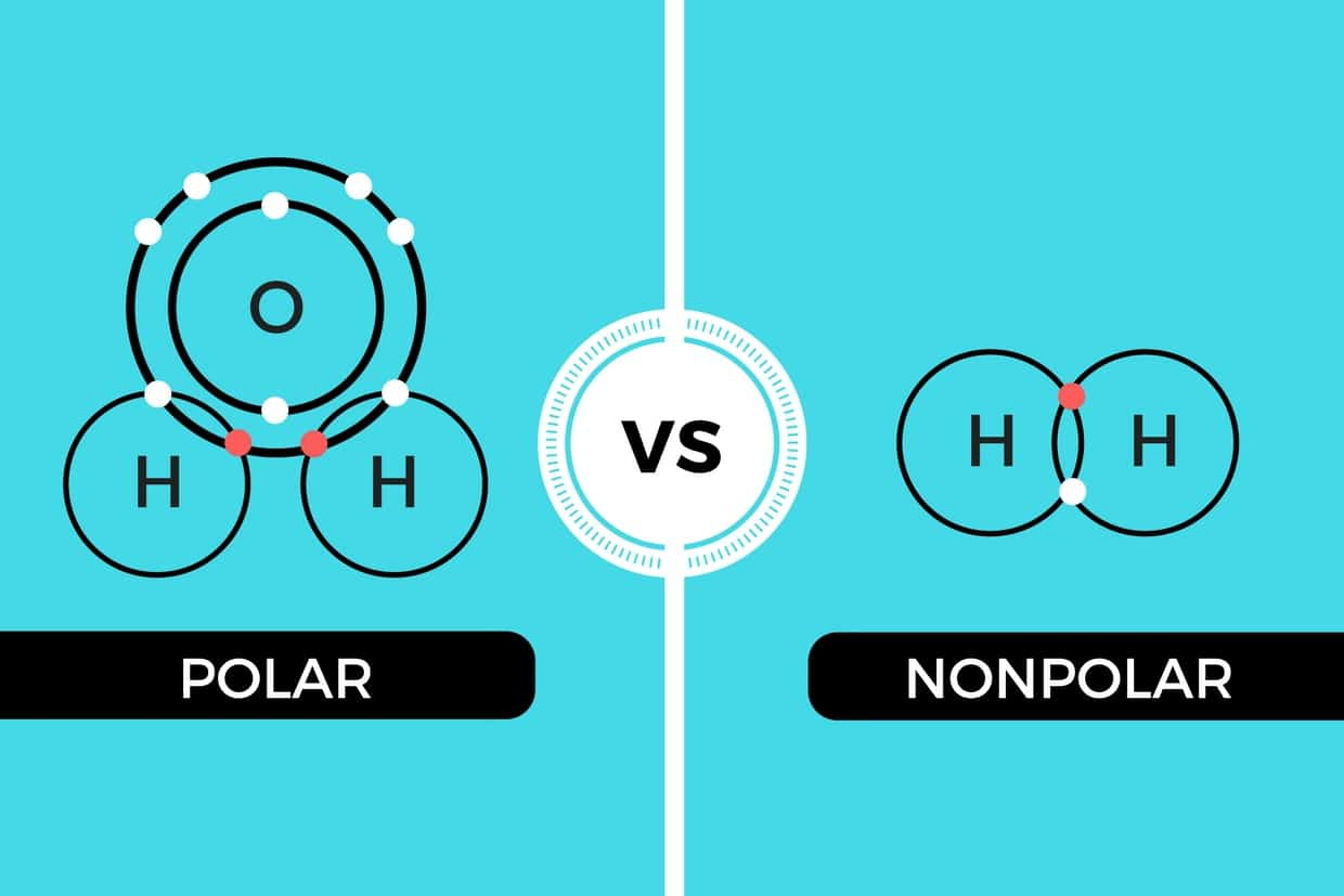 Polar vs Nonpolar