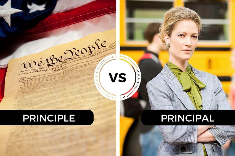 Principle vs Principal